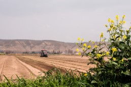 One Farm Platform